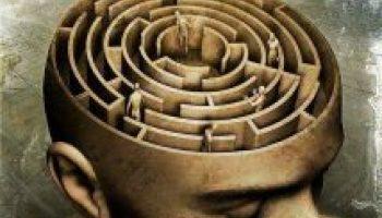 cerveaulabyrinthique